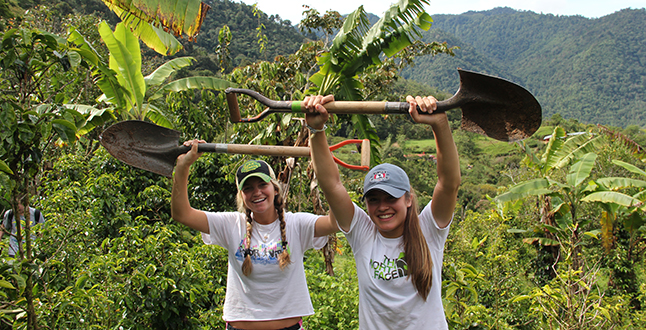 Sustainable coffee farming in costa rica